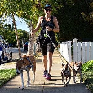 Shannon - Santa Monica Dog Walkers - Los Angeles Pet Care